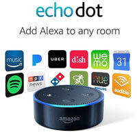 Echo Dot for disbled